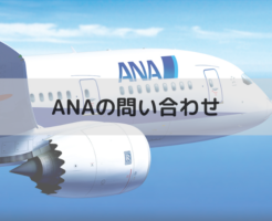 ANAの問い合わせ(飛行機)